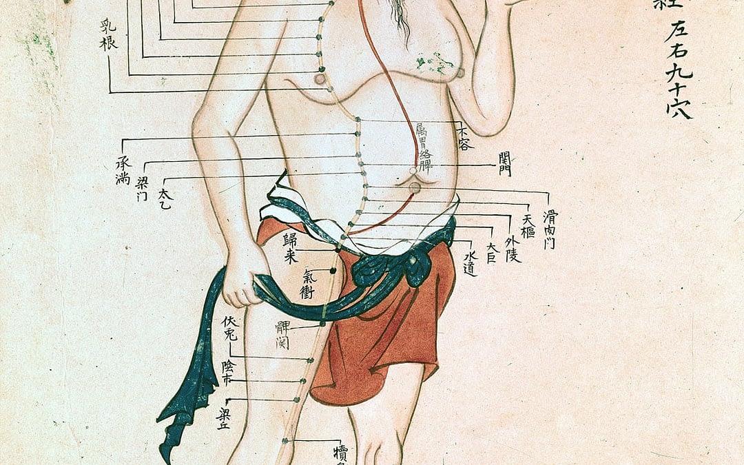 Que traite l'acupuncture ?
